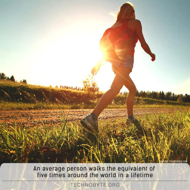 how much does a person walk in their life